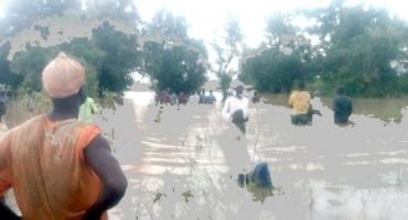 Débordement du fleuve Niger à Malanville: Situation critique dans la plupart des arrondissements (Plus de 300 ménages sans-abris, des hectares de culture envahis )