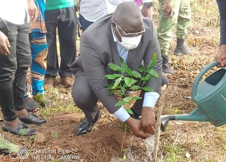 Journée mondiale contre la désertification et la sécheresse : Plus de 12 000 plants mis en terre à Ouèdo