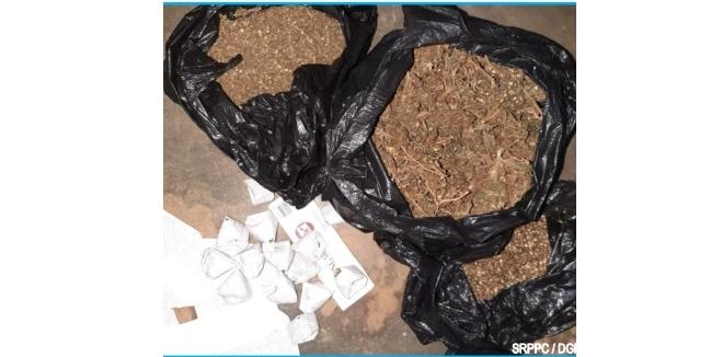 Lutte contre les stupéfiants dans le Zou Du chanvre indien saisi, 3 individus arrêtés à Cana
